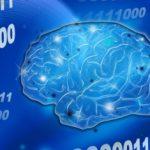 脳の衰えを感じたら早めに脳を活性化させた方がいいかも?!早めの対処で脳は復活するかも?!