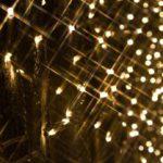 LEDのメリット・デメリットを知ろう!LEDに変えるとお得ができて、さらに環境にやさしい?!