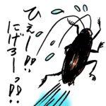 ゴキブリの生命力って一体どれだけ凄いの?ゴキブリにはいろいろと凄いところがある!?