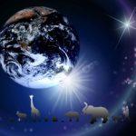 全ての生物の祖先をたどると同じ生物にたどり着く!?生物はみな兄弟?!人類の始まりはアフリカ?!